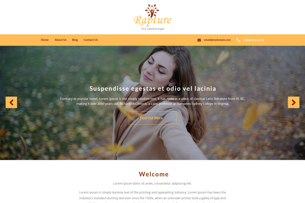 Rapture WordPress Website Design